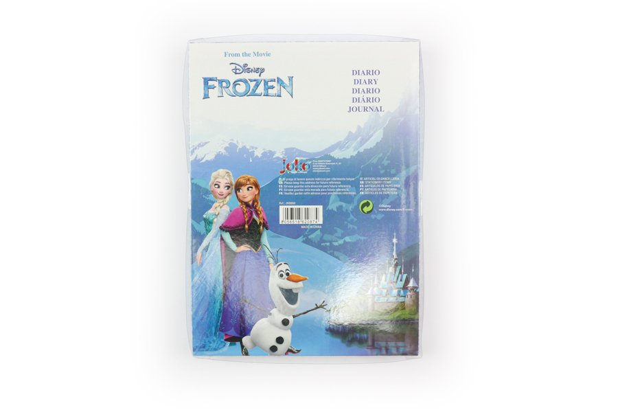 Disney Frozen Notebooks with lock packaging back
